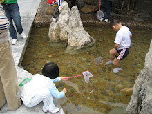 Catching goldfish at Baomo Garden