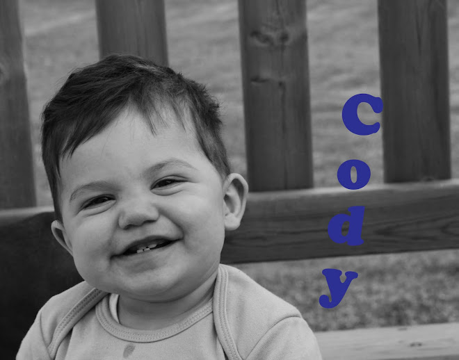 Cody's First Year