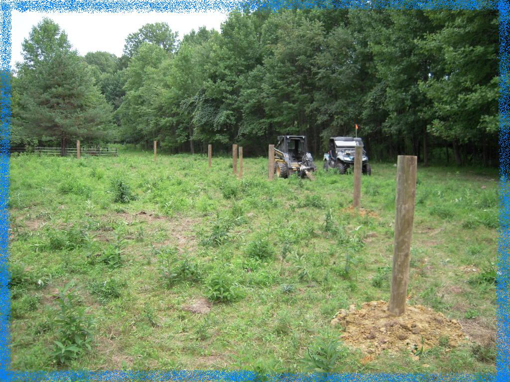 Meadow Creek Farm Riding Ring Goin 39 In