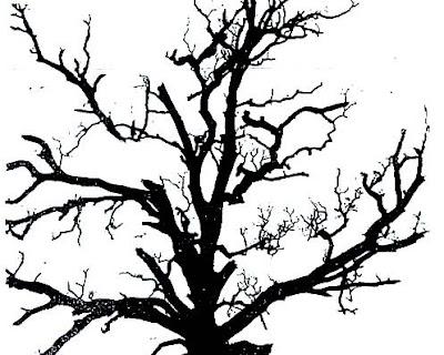 tree silhouette clip art. oak tree silhouette clip art