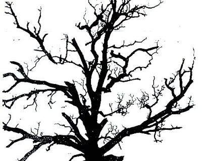 tree silhouette pictures. oak tree silhouette clip art