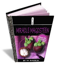 E-book (pdf) about mangosteen
