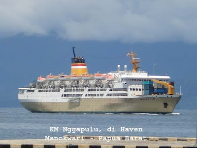 Manokwari Papua Bird And Wildlife Watching Tours Any Cruise Ship - How much is a cruise ship ticket