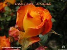 Rosas da amizade