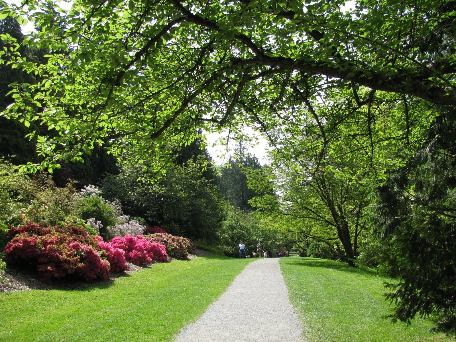 Linda Letters Washington Park Arboretum