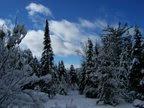 All Things Adirondack and Skiing