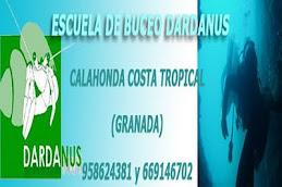Buceo Dardanus