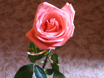 One Rose Means : I Love You!