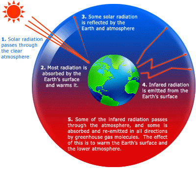 Write an essay on global warming and its effect on the environment write an essay on global warming and its effect on the environment ccuart Image collections
