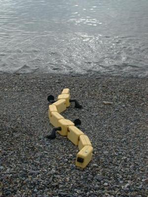 Salamander Robot
