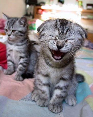 Một nụ cười bằng mười thang thuốc bổ
