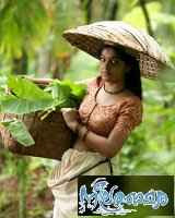 Watch Free Mollywood Neelathamara Movie > Online Download Film, Video, Trailers