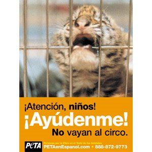 ATENCION NIOS NO VAYAN AL CIRCO
