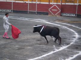 PROTESTA ANTI-TAURINA EN VMT