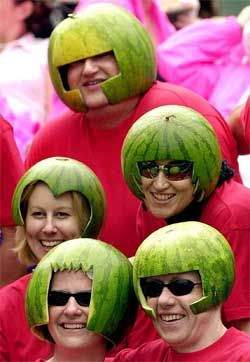 All of watermelons