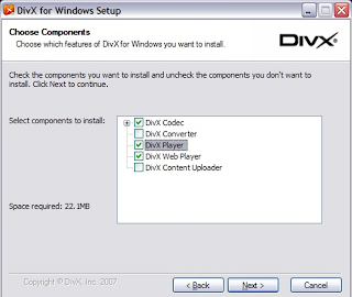 actual na screenshot ng DivX download setup
