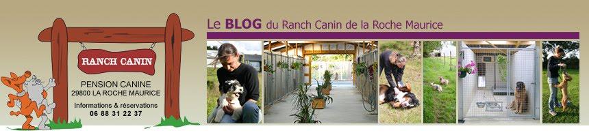Le ranch canin de la Roche Maurice
