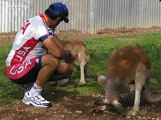 Adelaide 2004