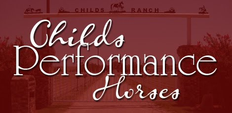 Childs Performance Horses