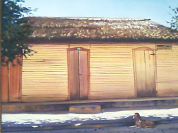 Primera casa con piso de cemento