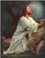 Conversa com Jesus Cristo