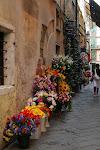 Sarzana -Italy-