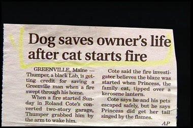 Dating headline good