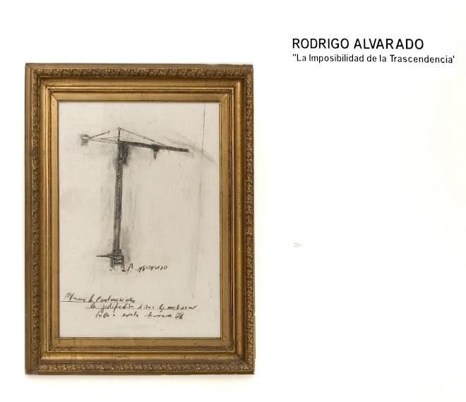 """""""La imposibilidad de la trascendencia"""" Galeria Isabel Aninat, julio 2009, Santiago, Chile."""