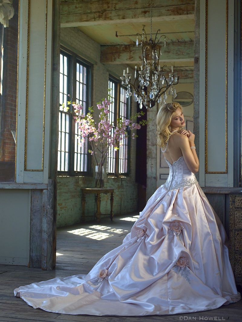 GETTING ABOARD: ALL ABOUT TRAINS AND BUSTLES . . . ~ Fashion in ...