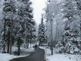 http://3.bp.blogspot.com/_TUmrEJJqV_Q/SPMH5OM936I/AAAAAAAAIWg/N4rq_5Cd-24/s320/J+on+path+in+snowy+woods.jpg