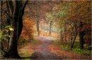 el otoño de Mayte Arenas