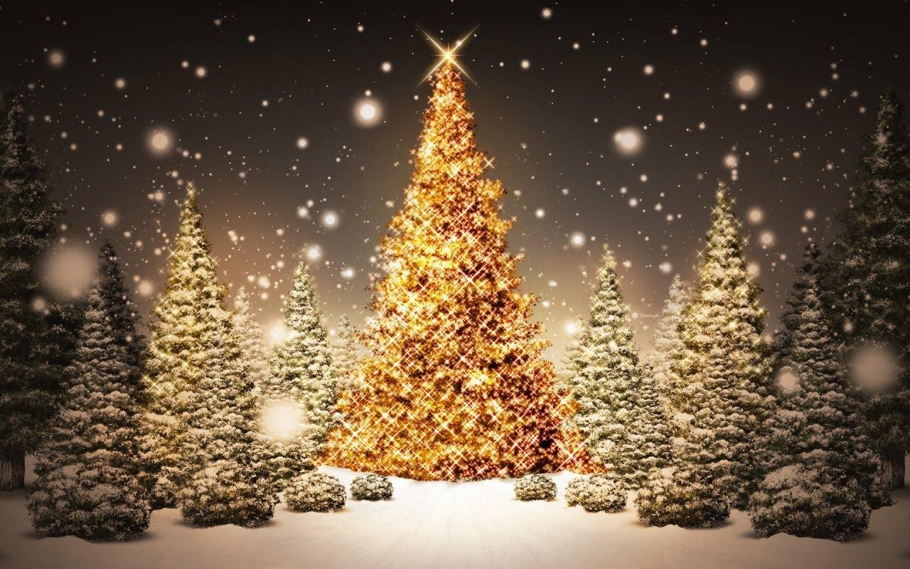 [árbol+navidad.htm]