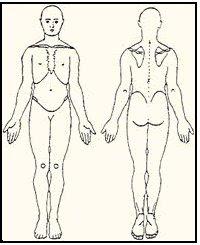 posición anatómica del cuerpo para su estudio