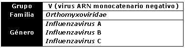 virus ADN ARN