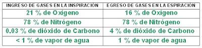 ingreso y egreso de gases durante la respiración