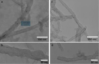 Deactivating Anthrax Toxin With Nanotubes and Light