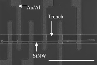 Caption: Scanning electron microscope image shows a single silicon nanowire positioned in an etched trench using NIST's nanowire manipulation technique. The trench helps keep the nanowire in position during the fabrication of the rest of the test structure, which measures metal/nanowire contact resistance. The scale bar is 20 micrometers long. Credit: NIST. Usage Restrictions: None.