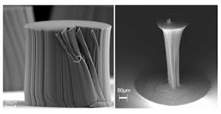 Caption: A carbon nanotube bundle before (left) and after (right) densification. Credit: Rensselaer/Liu, Usage Restrictions: Please run credit line.