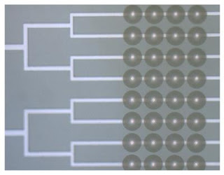 Zone-plates Atop Microfluidic Channels