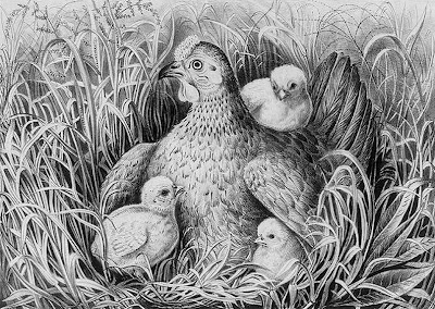 Mothers wing (Mother's Day) Currier & Ives