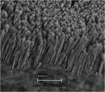 copper nanorods deposited on a copper substrate