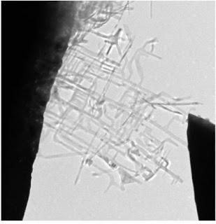 Nanonet and STM