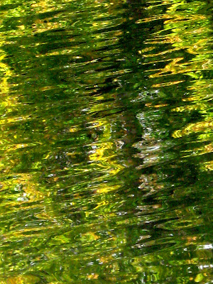 Fall Colors Lake Reflections Orange and Green