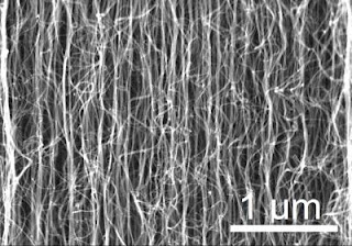 Nanotube Growth - SEM