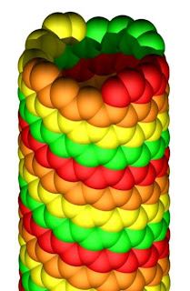 Nanotube Tapestry