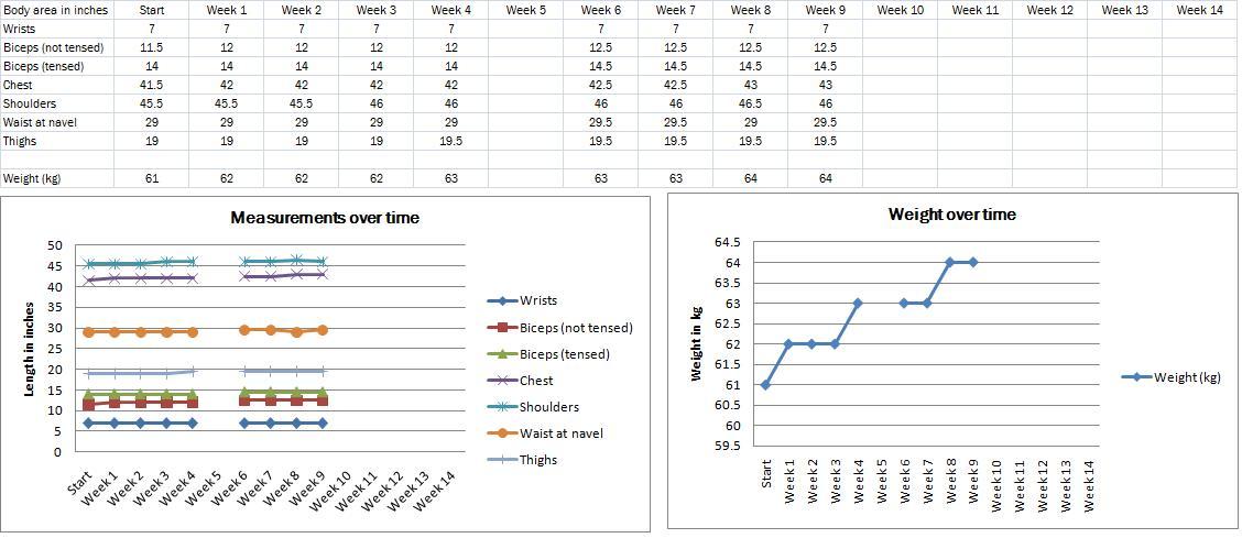 Sample Chart Templates » Food Intake Chart Template - Free Charts ...