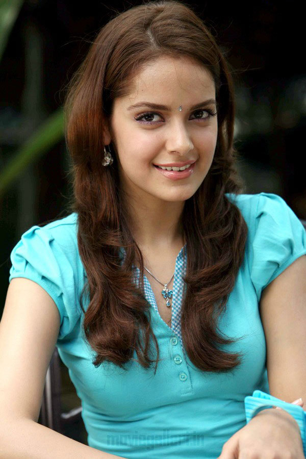 KANIMOZHI ACTRESS SHAZAHN PADAMSEE PHOTO GALLERY