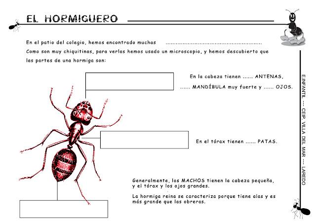 Coloreando letras: Hormigas, hormiguitas y hormigotas PROYECTO DE KINDER