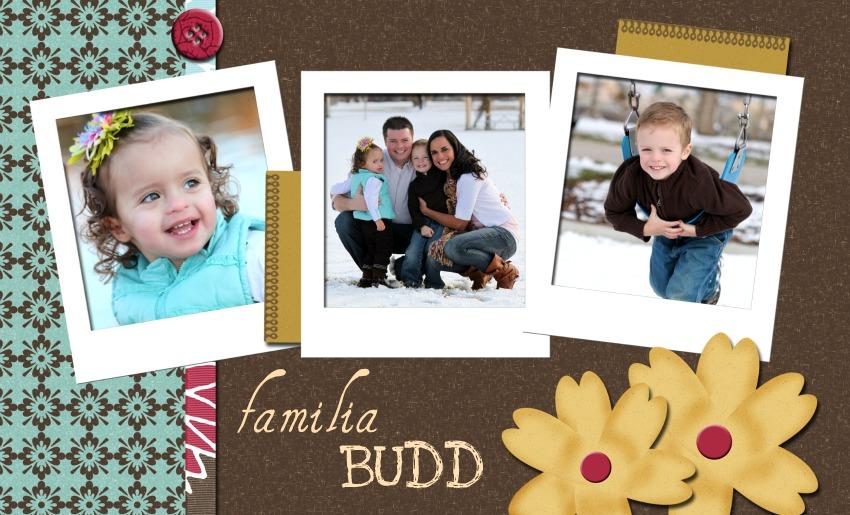 FAMILIA BUDD
