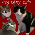 [countrycats.png]